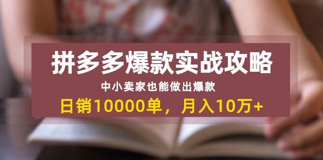 拼多多爆款实战攻略:中小卖家也能做出爆款,日销10000单 月入10w+(无水印)