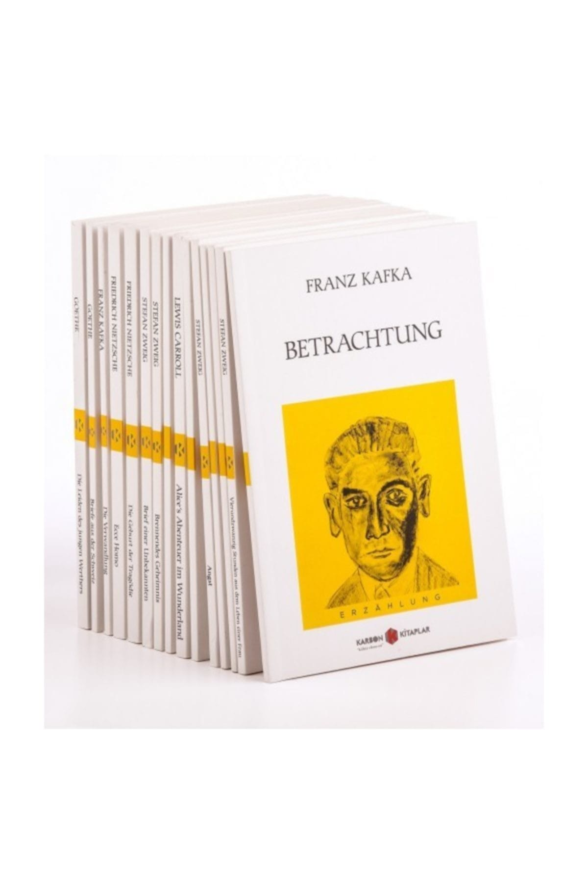 Kitaplar almanca SETI (15 Kitap) Friedrich Nietzsche, Stefan Zweig, Lewis Carroll, Franz Kafka, johann Wolfgang Goethe