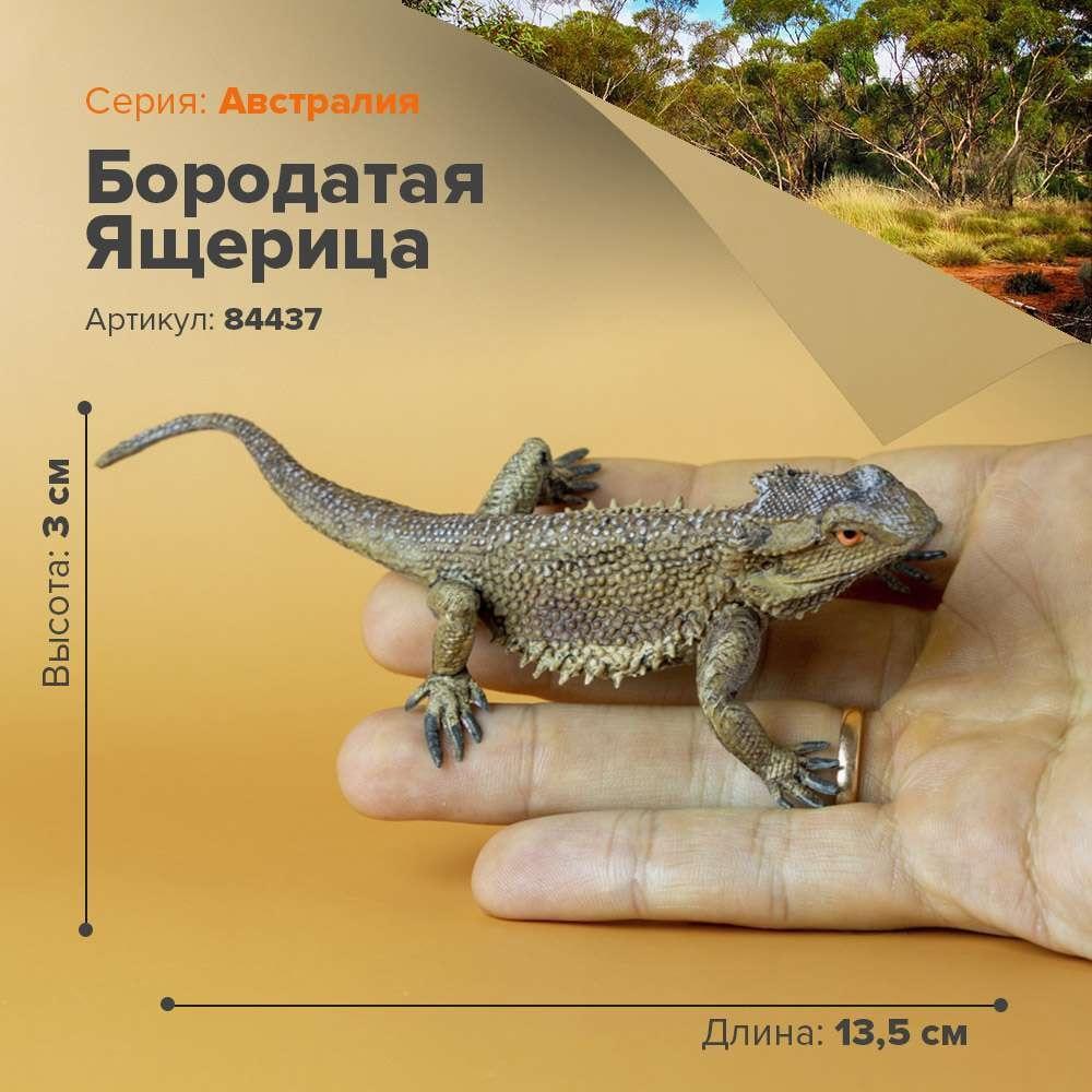 Figuras de animales salvajes de la selva de Australia figurita lagarto barbudo juguete coleccionable para niños modelo estatuilla