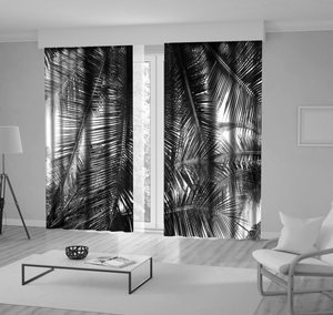 Curtain Palm Tree Leaves Tropical Scenery Island Nature Romantic Beach Photo Black White