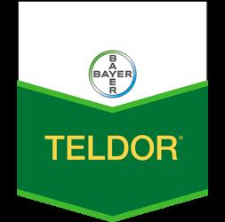 تيلدور SC 500 200 CC