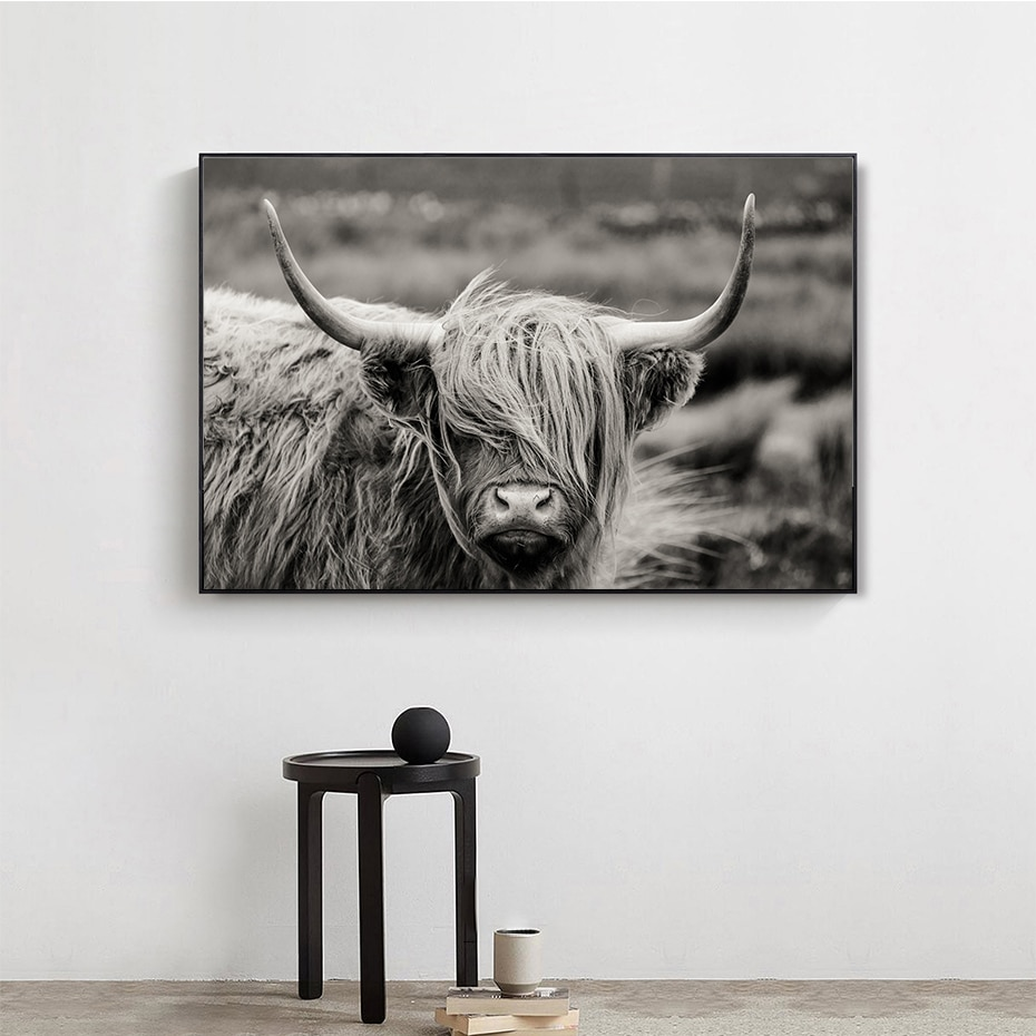 Scottish highland catt vaca yak animal poster arte da parede quadros em tela fotos para sala de estar casa decorativo