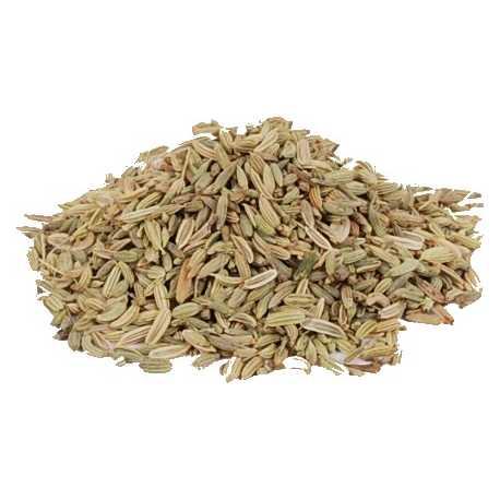 Hinojo semillas 1 kg - ESPECIAS PEDROZA