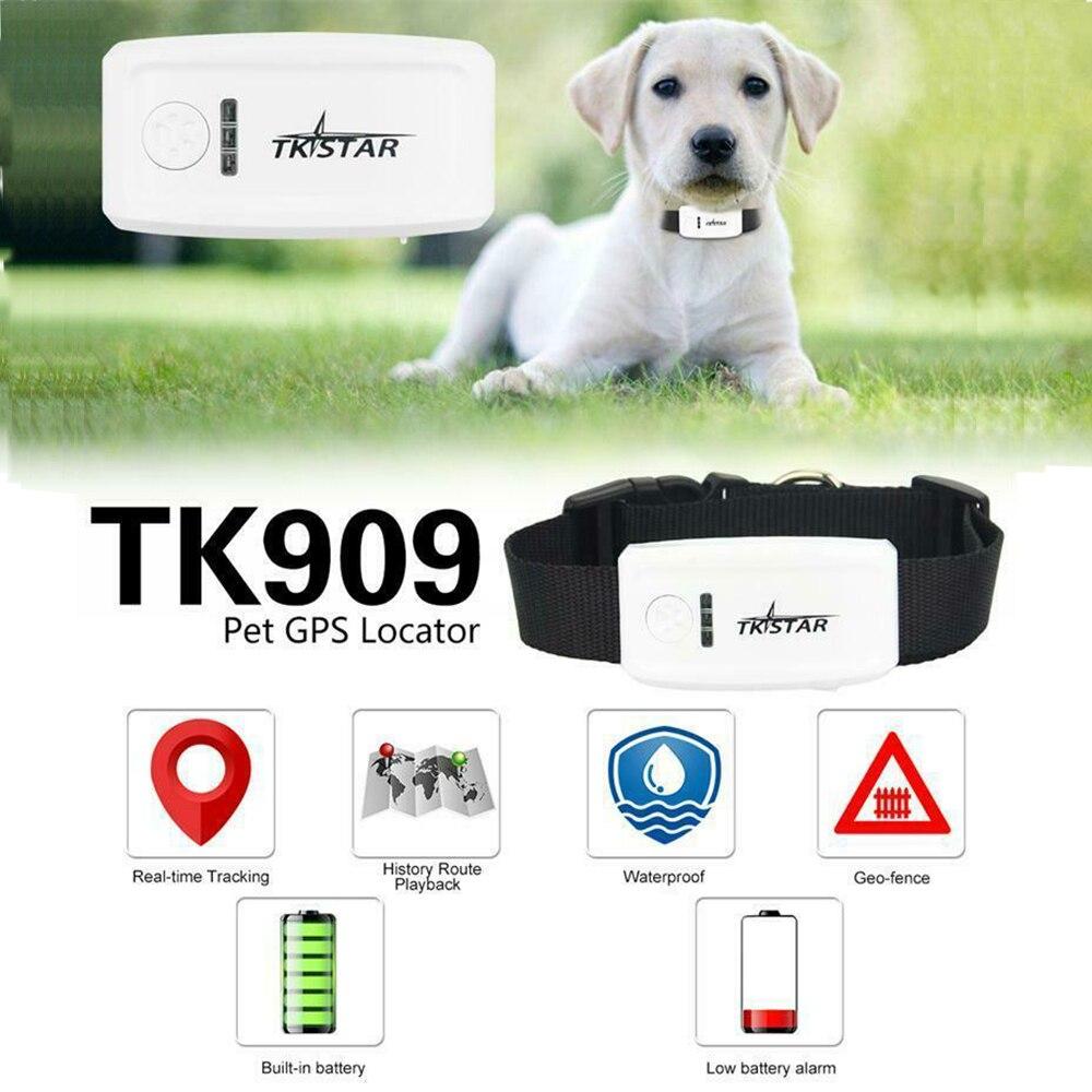 TK-STAR TK909 gps Домашние животные трекер GSM SMS GPRS трекер бесплатное приложение для TKSTAR, без коробки 100g2280