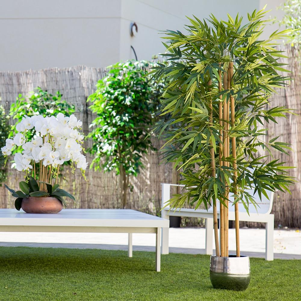 Planta Artificial, Árbol con Troncos Naturales, para Decoración Hogar, Bambú, Ficus, Wisteria, Olivo, Eucalipto, Almendro