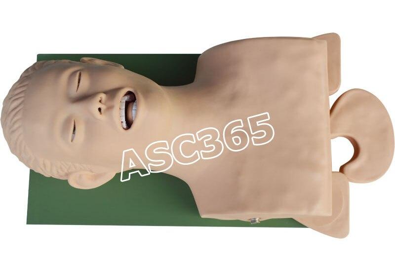 Entrenador de administración de vía aérea intubación 220 V para enseñanza de ciencia médica