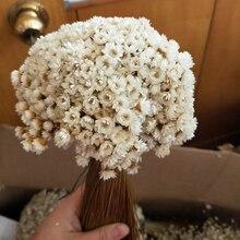 30PCS Decoraitve Dried Flower Mini Daisy Star Flower Bouquet Natural Plants Small Floral for Wedding DIY Home Decoration
