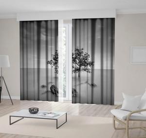 Curtain A Tree and Rocks Fog Covered Land Horizon Monochromic Nature Scenery Black Gray