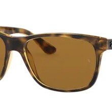 Rayban  4181 710/83 57 Wayfarer Models Sunglasses Brown Frame B-15 Brown Polarized Lenses High Quali