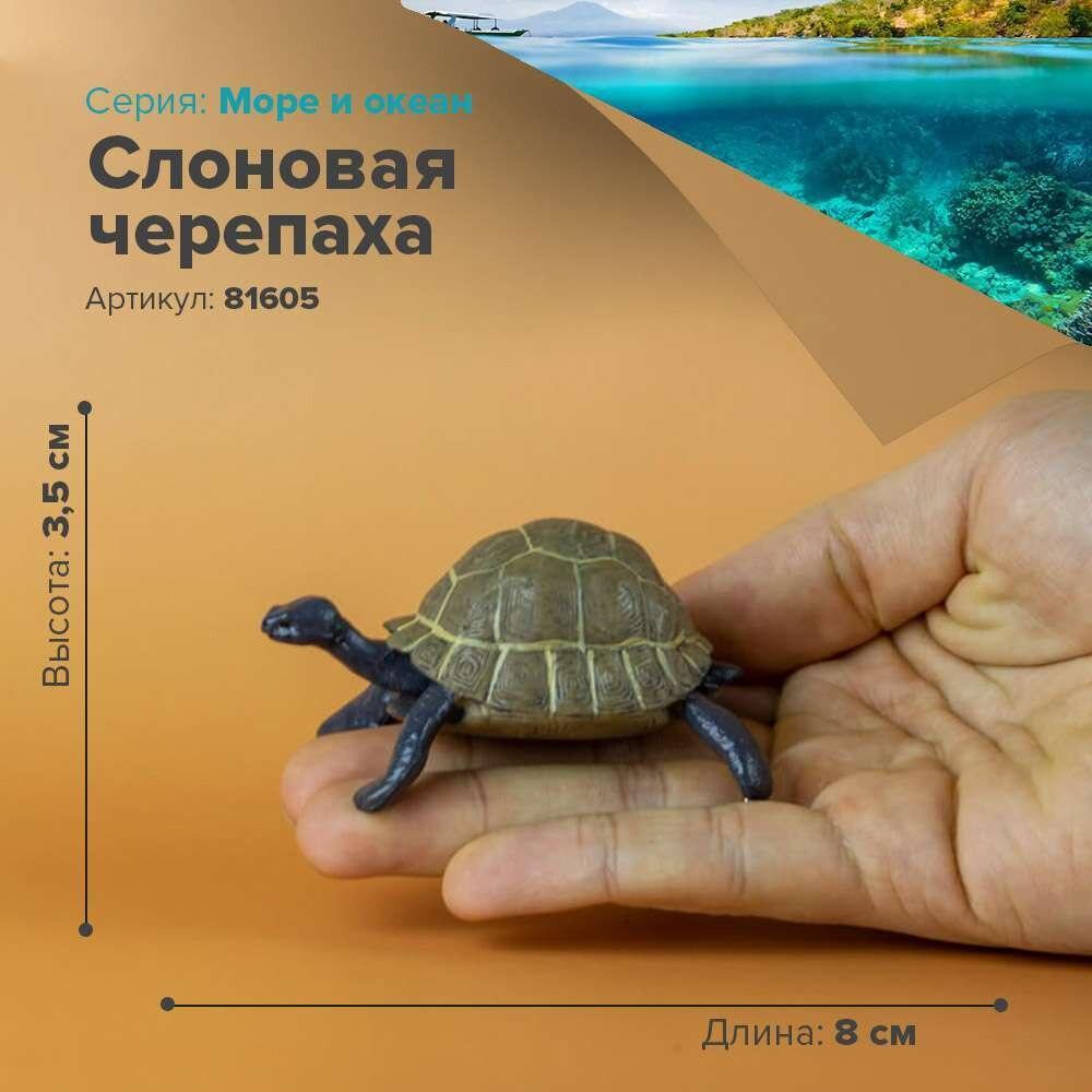 Figuras de animales marinos, tortugas marinas, estatuilla de mar, elefante, Tortuga, juguete coleccionable para niños, modelo estatuilla