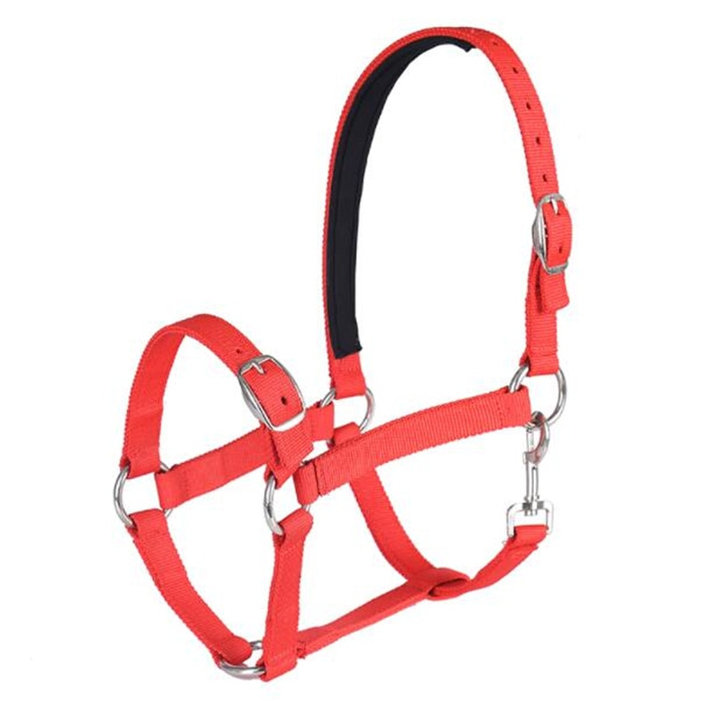 Cavassion Adjustable PP Equestrian Bridle Saddlery Equipment when Riding Horses
