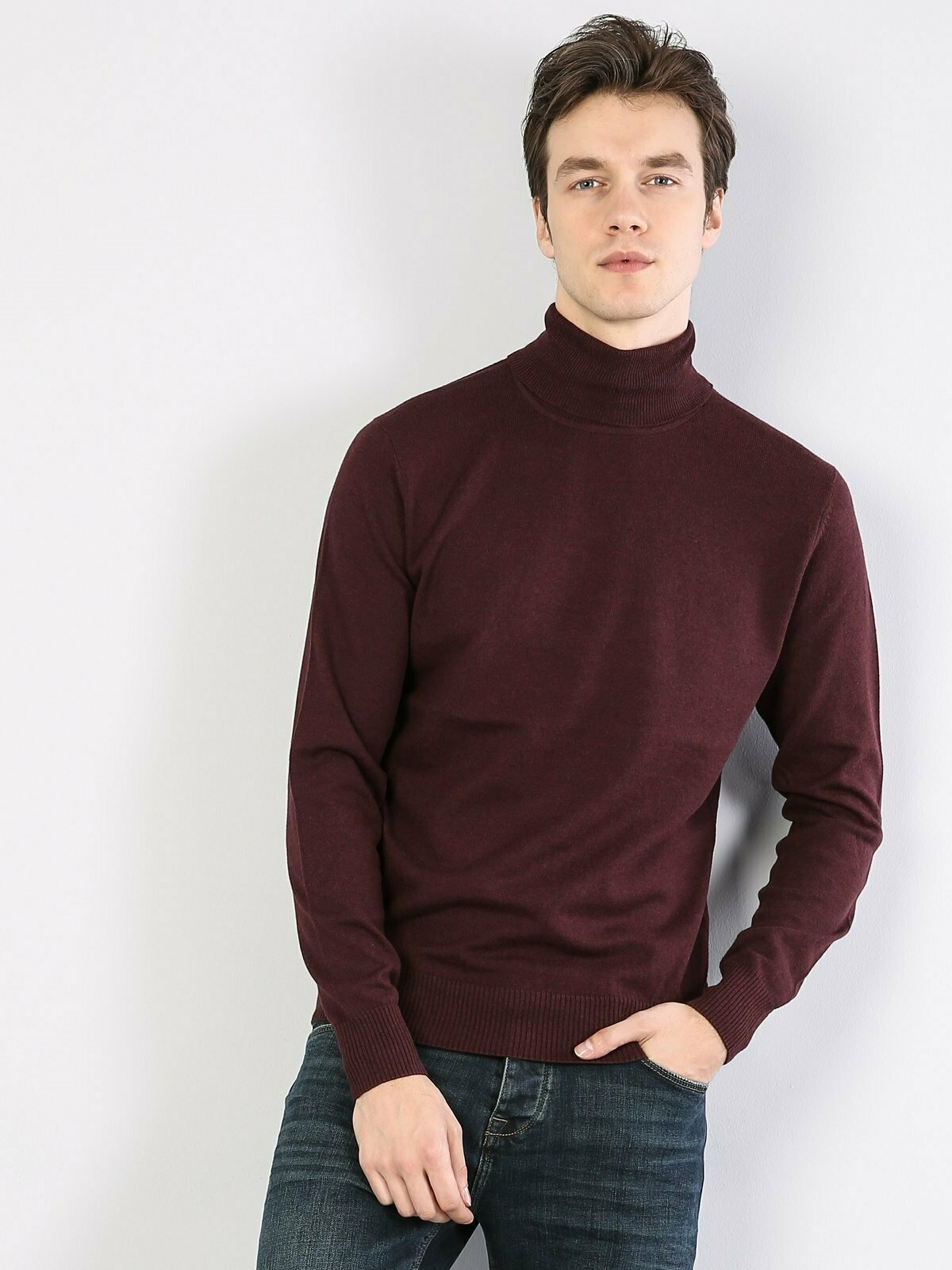 Colins Men Slim Fit Purple Sweaters Men's sweater fashion sweater outerwear,CL1023624