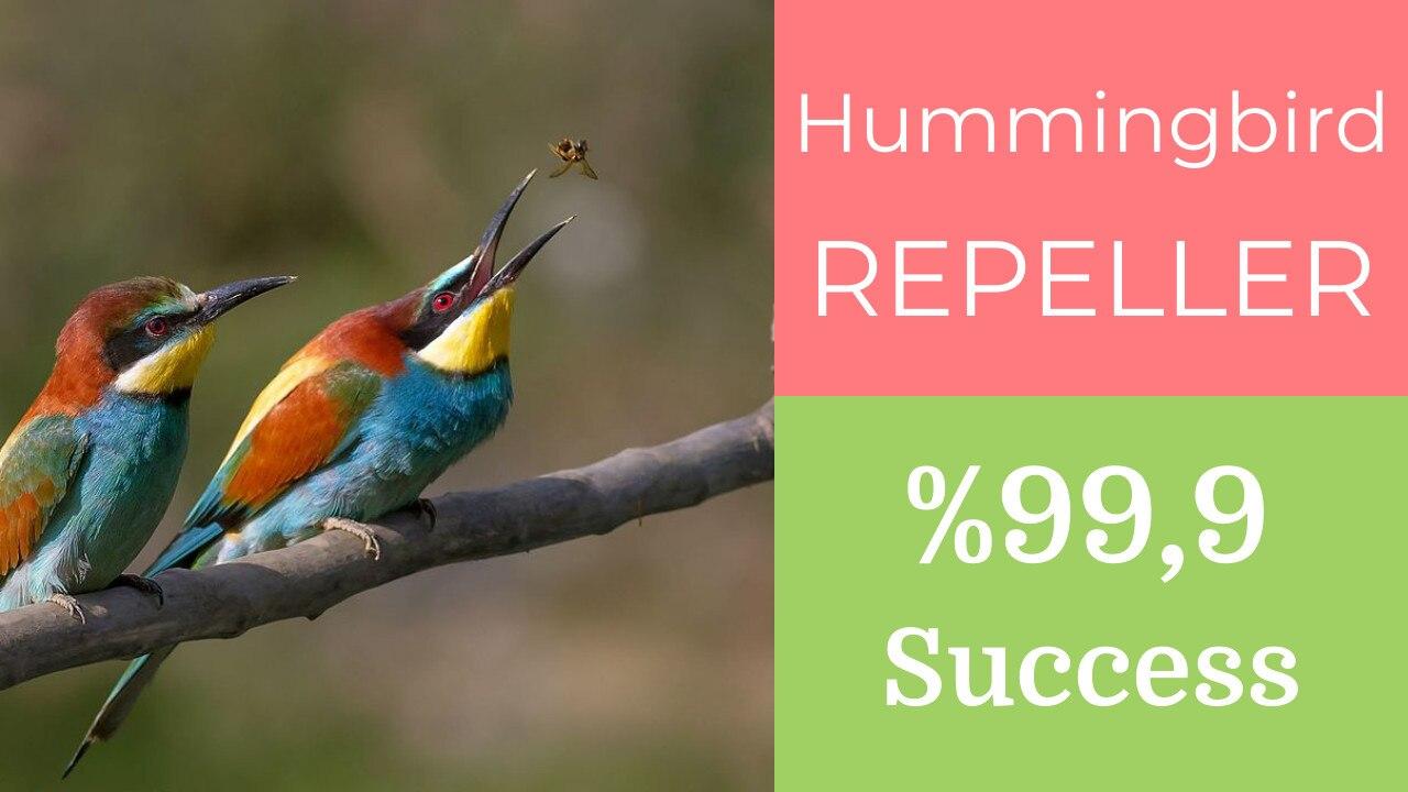 Универсальный Репеллент для птиц, летающий ястреб, звуковой Отпугиватель пчелы, отпугиватель птиц, защита от упущения, с голосом дикой