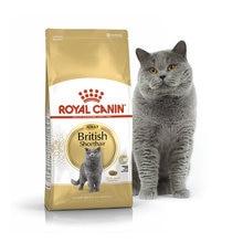 Kat Voedsel Royal Canin Britse Korthaar Volwassen, 4 kg
